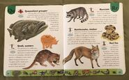 Deadly Creatures Dictionary (19)