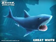 Hungry shark white
