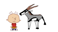Stanley Griff meets Gemsbok