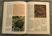 The Kingfisher Illustrated Encyclopedia of Animals (138)