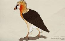 106 avisaurus archibaldi by green mamba-d5xg75w
