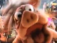 A young Boar laughing during the song Truffle Shuffle