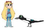Star meets Magpie