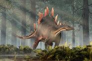 Stegosaurus (Stegosaurus stenops)