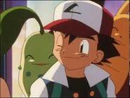 Ash chikorita and pikachu