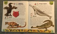 Endangered Animals Dictionary (8)