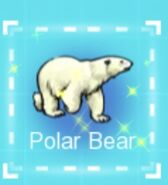 IMG dc polar bear