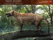 Mesonyx obtusidens by romanyevseyev-d4v0gei