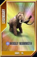 Woolly Mammoth Card