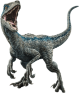 Fallen kingdom blue the velociraptor v3 by sonichedgehog2-dc9x53o