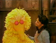 Big Bird falls asleep while telling Maria what's he's going to do in the morning