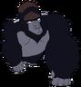 Danja the Gorilla