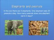 Elephants and Peanuts