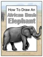 How to Draw an African Bush Elephant