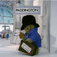 Paddington Bear-0