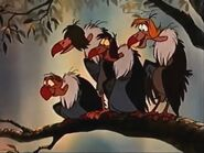 Vultures in The Jungle Book (1967)