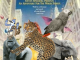 We're Back!: A Congo Animal's Story