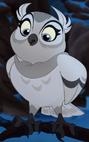 Owl TLG