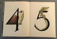 Animal Numbers (Bert Kitchen) (3)