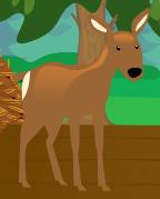 Deer mib