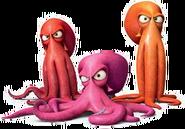 Octopis
