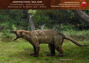 Amphicyon major by romanyevseyev-d4ufv56