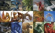 Fifteen Dragons of D&D