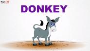 MagicBox Donkey
