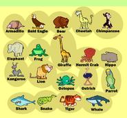 Stanley-charades-animals
