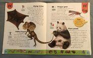 Weird Animals Dictionary (7)