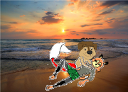 Bodi sang to Darma on the beach (The Little Rock Dog)