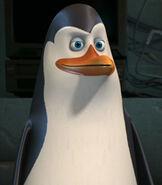 Kowalski in The Penguins of Madagascar
