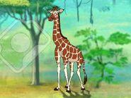 Rileys Adventures Reticulated Giraffe