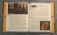 Scholastic Encyclopedia Of Animals (32)