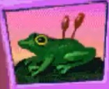 Frog-jumpstart-preschool-the-alphabet-thing