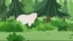 Kermode Bear (Wild Kratts)