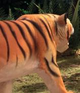 Robot Chicken Tiger