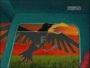 CTCD Crow