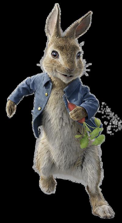 Peter rabbit 2018 character