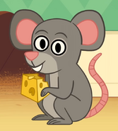 Mouse in turn and learn