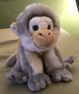 Winslow the Woolly Monkey
