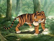 Rileys Adventures Bengal Tiger
