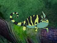 Rileys Adventures Veiled Chameleon