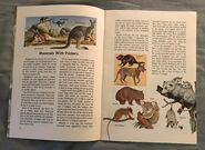 A Golden Exploring Earth Book of Animals (2)