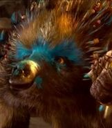 Echidna in Legend of the Guardians The Owls of Ga'Hoole