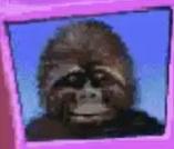 Gorilla-jumpstart-preschool-the-alphabet-thing