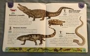 Reptiles and Amphibians Dictionary (21)