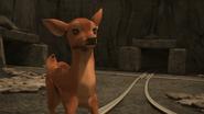 TTTE Deer