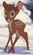 Bambi snow