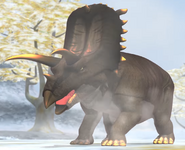 Bravoceratops dbwc
